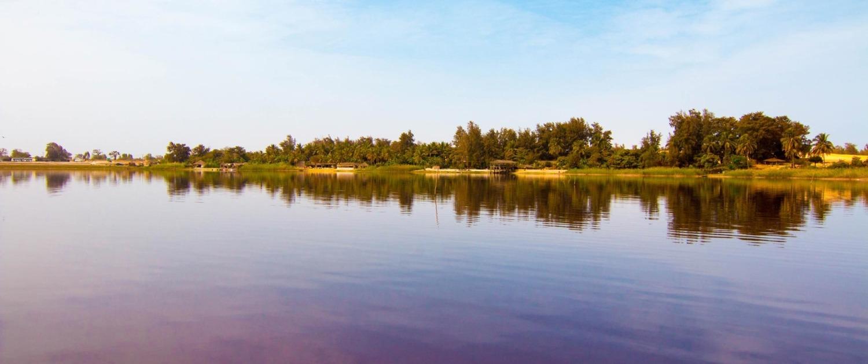Sur 5 km de long pour 800 m de large, séparé de l'océan par un interminable cordon dunaire planté de filaos, le Lac Rose ou Lac Retba, est l'une des principales attractions touristiques du Sénégal.